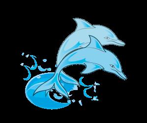 dolphin-clip-art-dolphins
